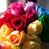 Bridal Bouquet - Rainbow