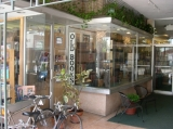 Storefront 2 - The left-hand side of our storefront windows, when entering our alcove from Main Street, downtown Sarasota.