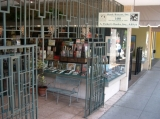 Storefront 5 - The right-hand side of our storefront windows, facing west from Main Street, downtown Sarasota.