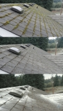 Roof Clean Treat - Light Scrape, blow roof, clean gutters, and treat with zink