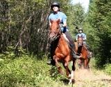 Horses - Horseback riding at the Eco-Lodge