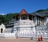 Sri Lanka Discovery -- Gay Group Vacation of Sri Lanka for Gay & Lesbian Travelers - Gay group tour of Sri Lanka.