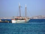 gay cruise from Mykonos to Delos & Rhenia
