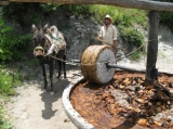 Mezcal Educational Excursions of Oaxaca Image 1