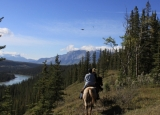 Trail Ride - Athabasca River Ridge