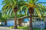 Beautiful Mid-century - 3 miles to Mission Bay! SOLD