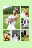Weddings - We have many Weddings take place on the farm.  Our prices are very reasonable and you get to use the place for the entire weekend.  In our Spring Weddings it has become a tradition to hold a baby goat for good luck and in the Fall, a chicken!  This is not a requirement.