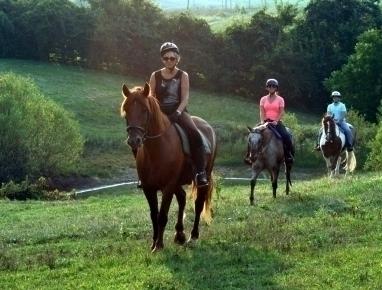 Ride Horses Kentucky