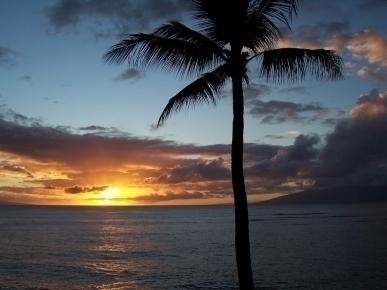 Maui Tropical Sunsets