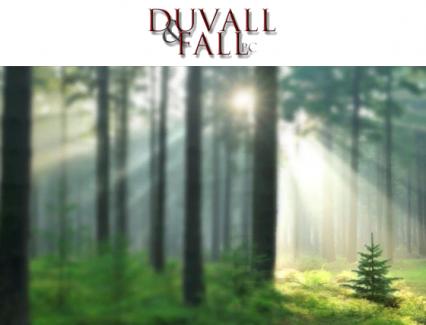 Duvall & Fall, P.C.