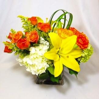 Imperial Flowers