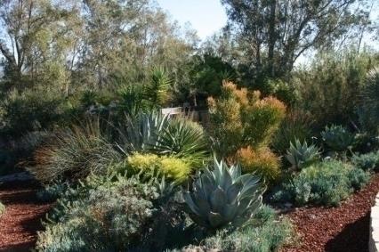 Paul F Yount Landscape Design