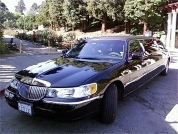 Mr Tims Limo Company