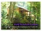 Wolf Branch Cabin