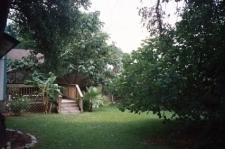 Robert N. Adams Organic Lawn Service