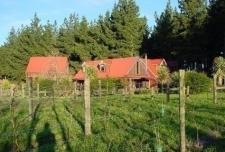 Halkett Lodge B and B