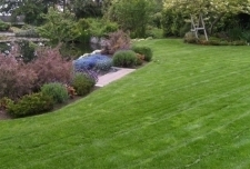 Brinck's Landscape Maintenance/Brother Nature Seed
