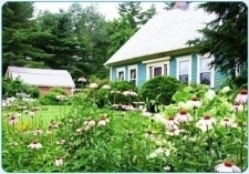 Foothills Farm Bed & Breakfast