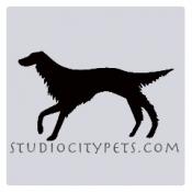 Studio City Pets